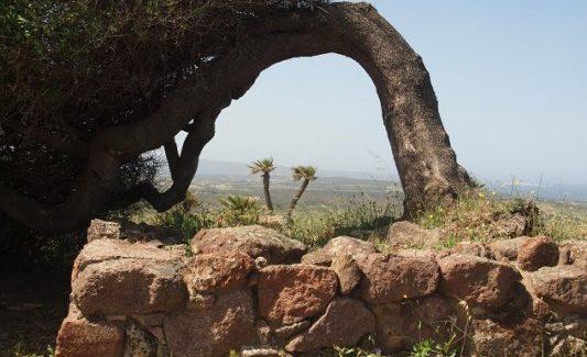 La storia di Carbonia e i suoi monumenti aperti
