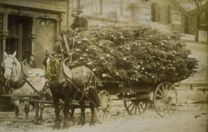 Carro di alberi di Natale, Hartford, ca. 1890 – Connecticut Historical Society and Connecticut History Online