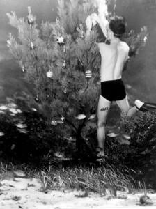 Per ordine del Fire Marshall, tutti gli alberi di Natale dovevano essere conservati almeno trenta metri sott'acqua