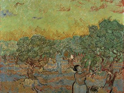 Fig. 16 – Vincent van Gogh, La vigna verde, 1888