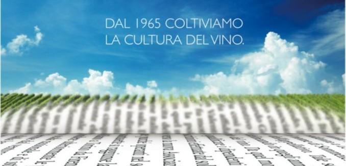 """Grande successo a Cagliari per la """"Giornata nazionale della cultura del vino e dell'olio"""""""
