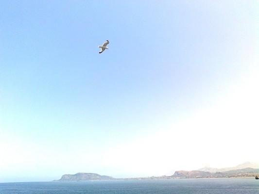 La costa tunisina