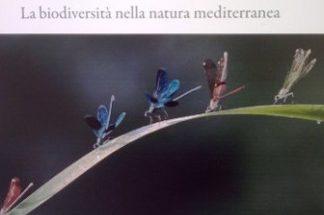 1° festival della fotografia naturalistica