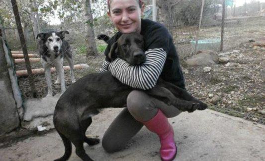 """""""I Miei Amici"""" di Ghilarza: rifugio e speranza di vita per tanti cani abbandonati"""