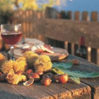 Agriturismi d'autunno: Toscana, Sicilia e Piemonte le mete più ambite