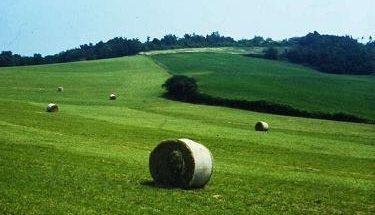 Area rurale