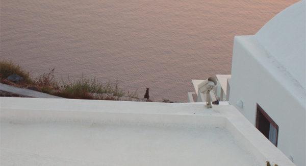 Santorini, tramonti e gatti mediterranei