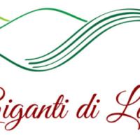 Giganti di Langa: generazioni di vignaioli a confronto