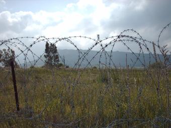 L'Indipendenza sulle alture del Golan