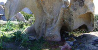 Il giardino di pietre