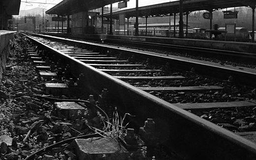 La strada del dialogo: intercultura in stazione