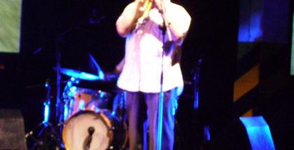 Un musicista