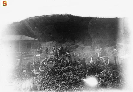 Donne di miniera
