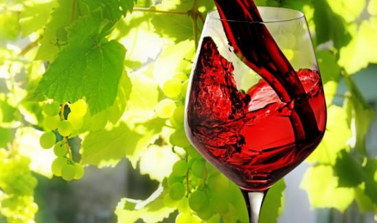 In arrivo il Meeting del Vino Campano