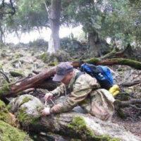 Sulle orme di Linneo alla ricerca di insetti in Sardegna