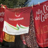 Il Wine Bar di Terre di Campania a Scenari Casamarciano