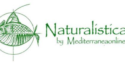 logo naturalistica