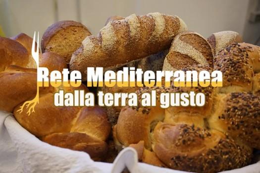 rete mediterranea