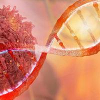 CRS4, tecnologie e analisi non invasive per lo studio dei tumori