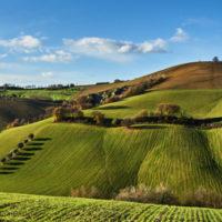 """Seminario """"Natura 2000, Aree Protette e Agricoltura Sostenibile. Opportunità, Esperienze e Buone pratiche dello Sviluppo Rurale 2014/2020"""""""