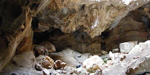 """Ricerche entomologiche nella Grotta """"Sa Cava Romana"""" a Nuxis  (Sulcis, Sardegna sud-occidentale)"""