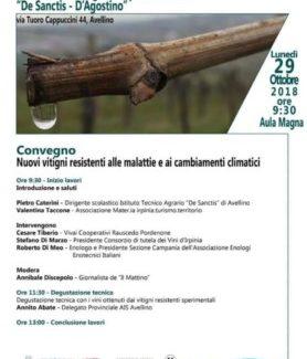 """Al Convegno sui Vitigni Resistenti presso il """"De Sanctis"""" di Avellino"""