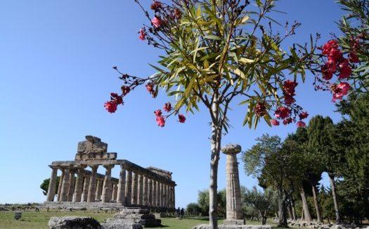 La XXI edizione della Borsa Mediterranea del Turismo Archeologico a Paestum