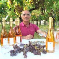 La Passione di una vita per il Moscato di Trani: intervista a Franco di Filippo