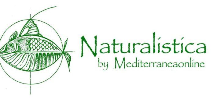 Pubblicato il primo volume di Naturalistica