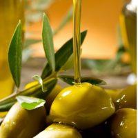 Sardegna: tutti i riconoscimenti della Guida agli Extravergini di Slow Food