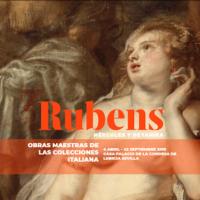 Due capolavori di Rubens della Galleria Sabauda, saranno esposti al Palazzo Lebrija di Siviglia