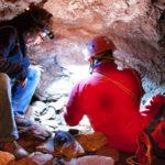 Ricerche entomologiche condotte nella Grotta'e Scusi a Villasalto (Sardegna sud-orientale)