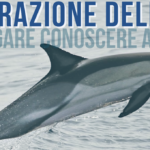 Operazione Delphis 2019. Il prossimo 21 luglio partecipa attivamente alla tutela del mare