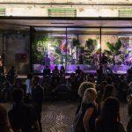 Michael Nyman: anteprima mondiale in apertura di GOD IS GREEN - Festival su sostenibilità e futuro di Firenze