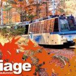 A bordo del Treno del Foliage l'autunno è a portata di finestrino