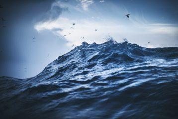 poesie sul mare