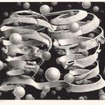 A Trieste arriva la grande mostra Escher, dal 18 dicembre 2019 – 7 giugno 2020