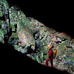Ricerche entomologiche nella Grotta Crovassa de Pranu Pirastu, Foresta di Marganai, Comune di Domusnovas (Sardegna sud-occidentale)