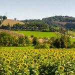 Ultimi weekend d'estate, alla scoperta di mete gourmet, cantine e relais di prestigio in viaggio per l'Italia