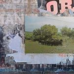 Paolo Carta, Giulia Casula e SKAN chiudono A Place for Art. Studi d'artista al Ghetto